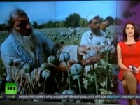 US Troops Protecting and Harvesting Opium in Afghanistan